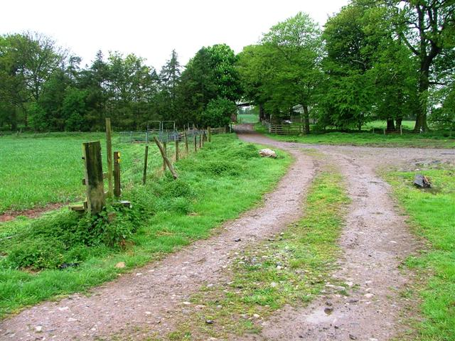 Farm Track to Hawksnest