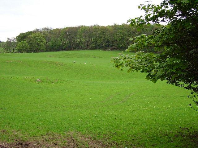 Slopes of Knockmountain