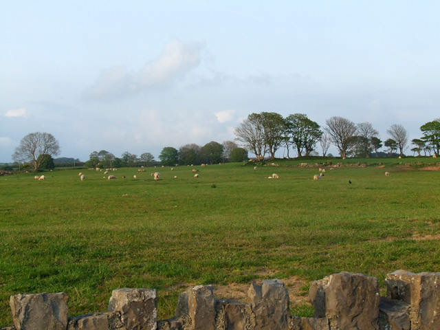Field North of Newborough