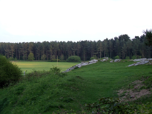Land adjacent to Newborough Forest