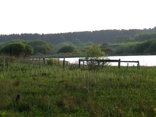 View of Llyn Rhos-Ddu