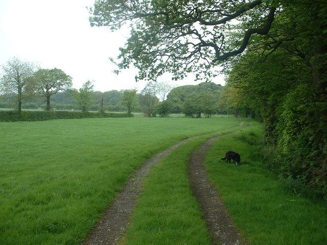 Farm track near Ellel