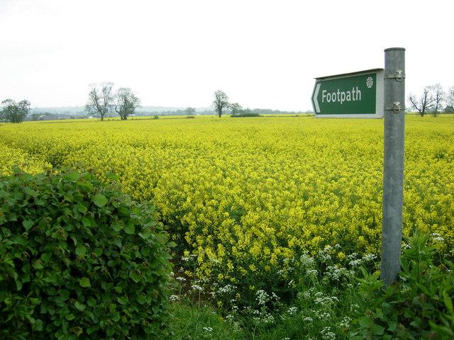 Footpath near Bugbrooke