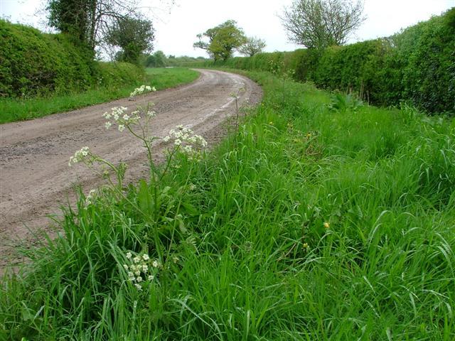 Lane at Deepdale
