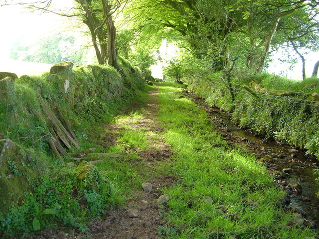 Green Lane near Wrangaton Moor Gate