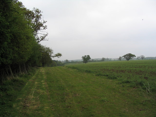 Southern boundary of Morkery Wood