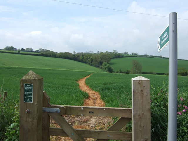 Footpath across field of young crops