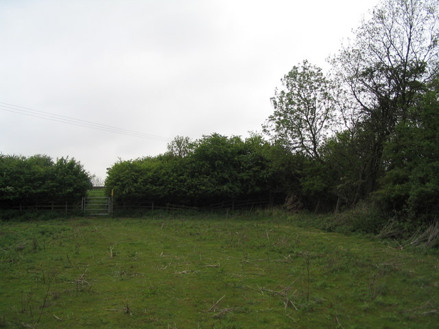 South-west corner of Morkery Wood