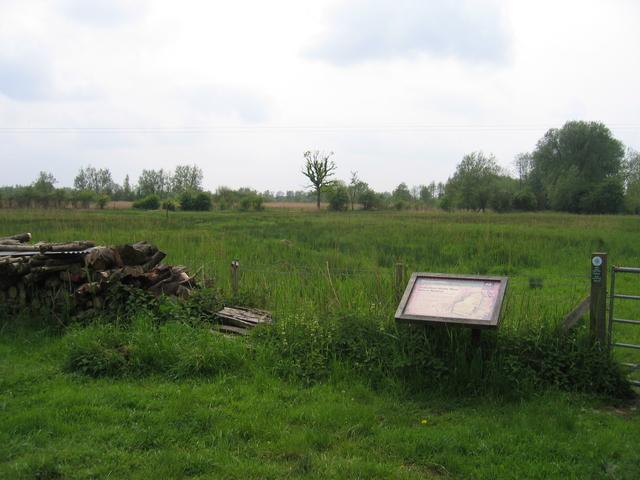 Feckenham Wylde Moor Nature reserve