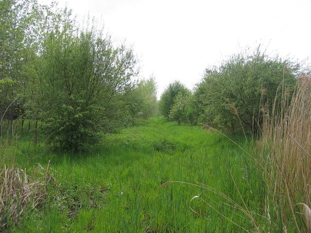 Footpath to Beanhall Mill Farm
