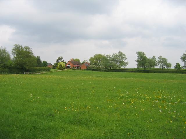 Berrowhill
