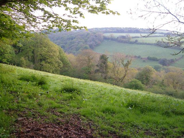 Avon valley below Didworthy