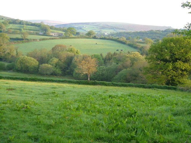 Badworthy Brook valley