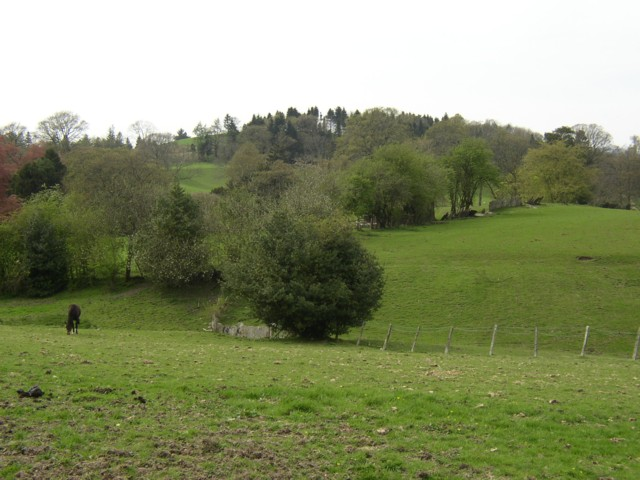 Pasture near Hawkshead Church