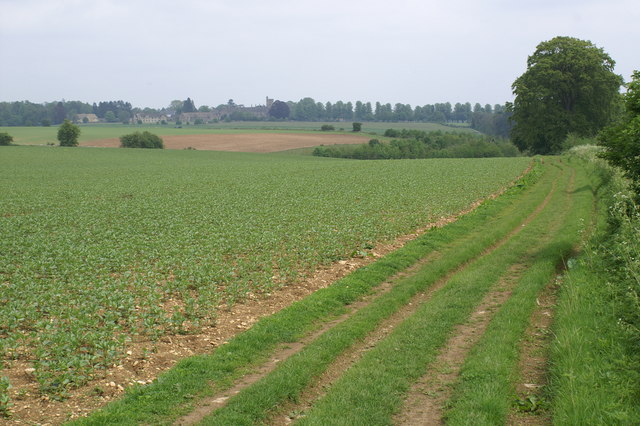 Monarch's Way near Cirencester
