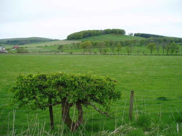 Farmland near Skirling