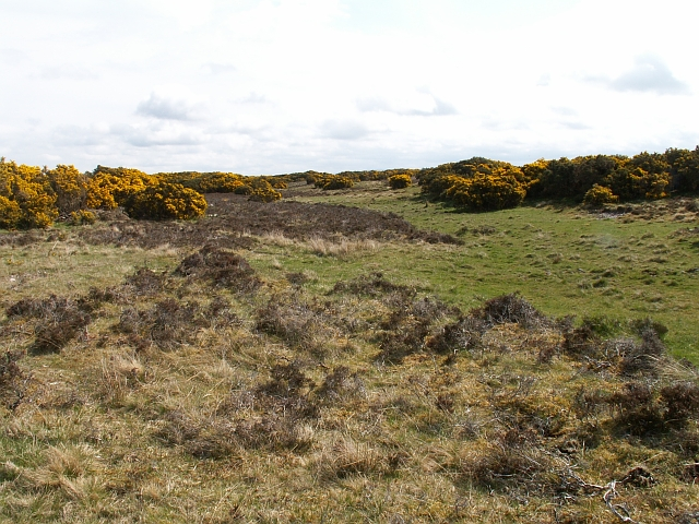 Moorland near Druimashie