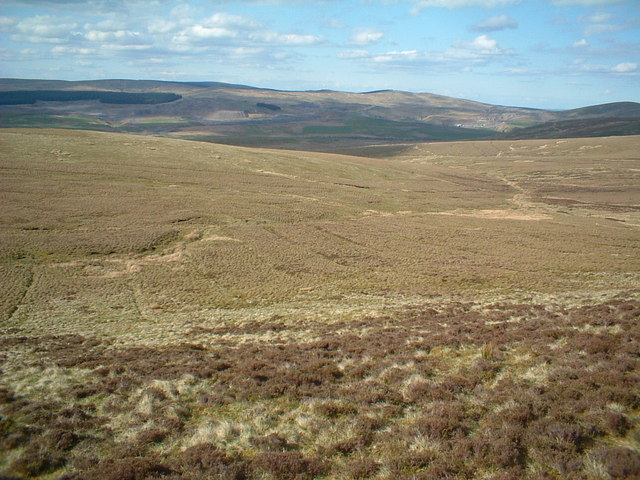 Hawlk Hill from the lower slope of Little Cairn Table