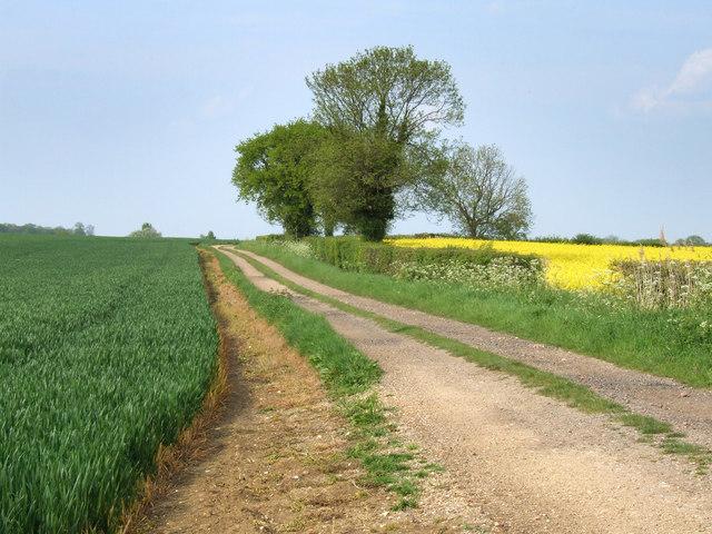 Farmland track.