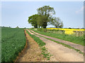 TL1359 : Farmland track. by Mike Fowkes