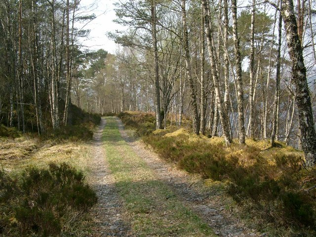 Track on the south side of Loch Beinn a Mheadhoin