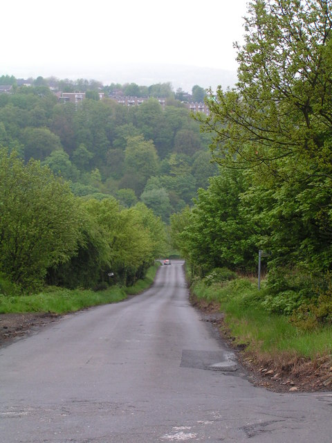 Hagg Hill with woodland beyond