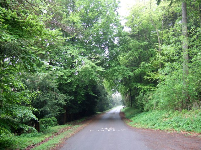 Drive through Wendover Woods