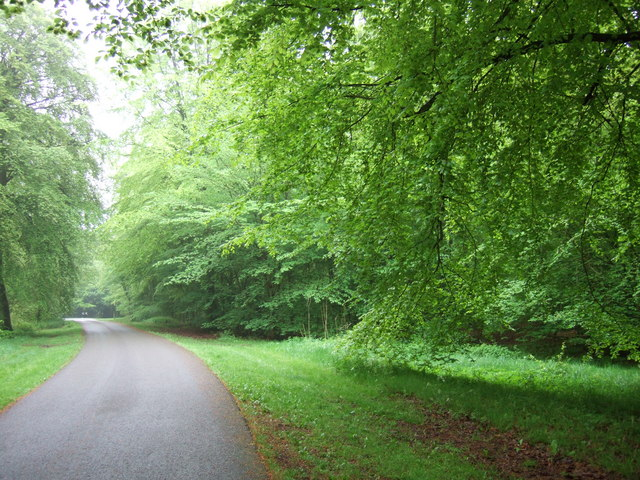 Wendover Woods, Chivery