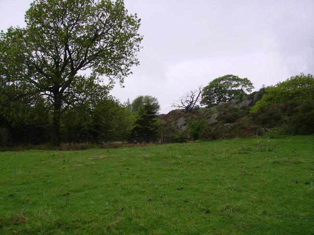 Near Gawthwaite Land