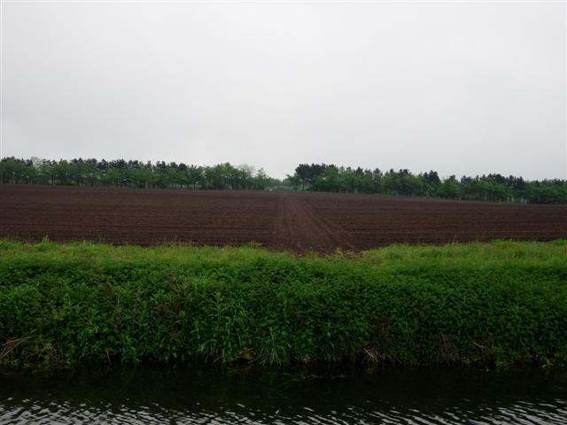 A Ploughed Field Next to the Chesterfield Canal at Ranby