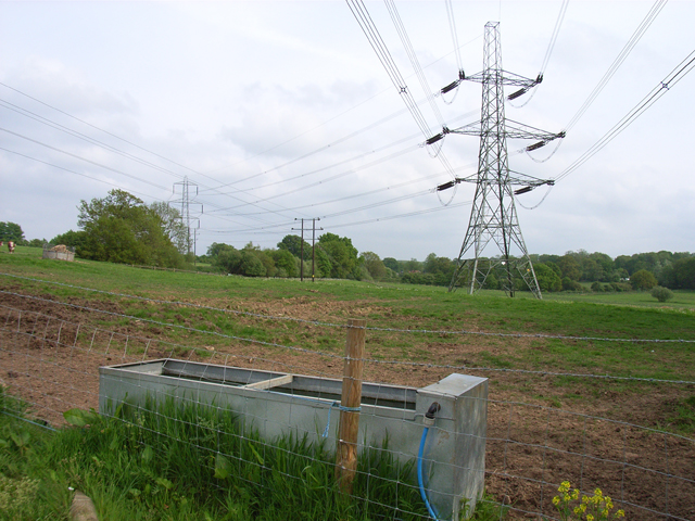 Pylons in Dogmersfield Park