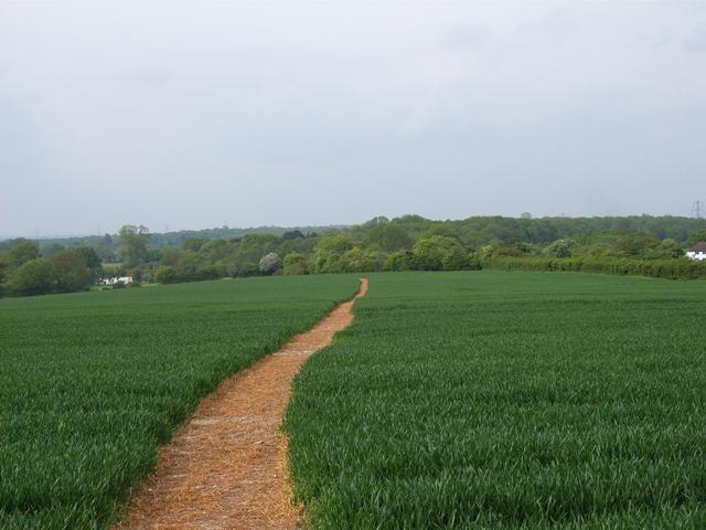 Farmland above Hill Side