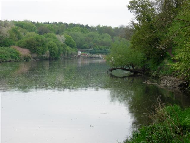 River Wear and Footbridge at Cox Green