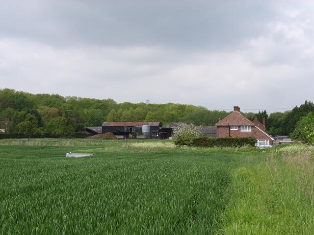 Little Rye Farm
