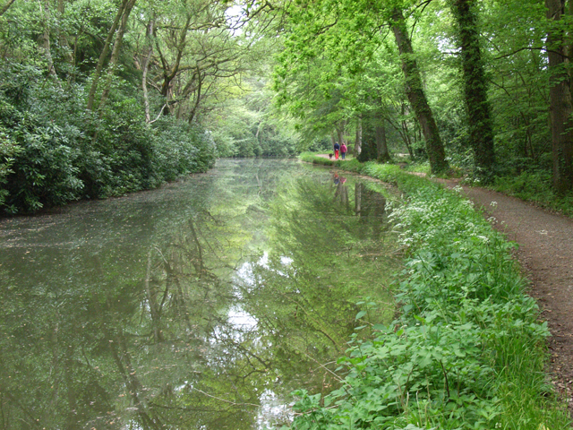 The Basingstoke Canal, near Dogmersfield