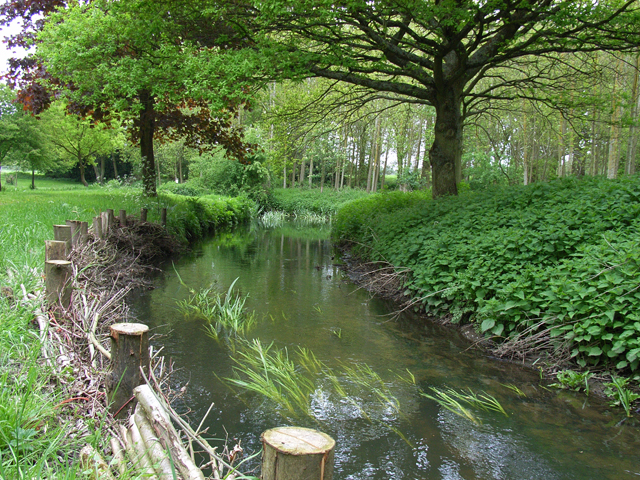 A branch of the River Hart at Turner's Green