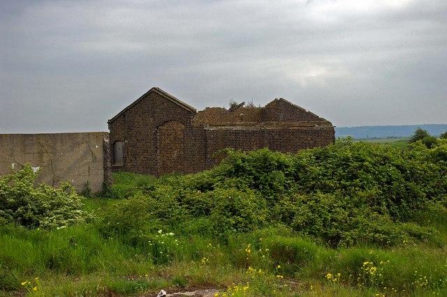 Ruin In The marsh