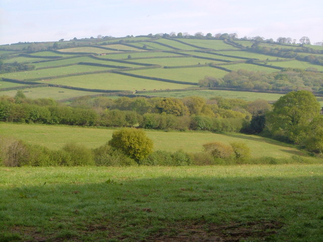Fields above Broad Moor