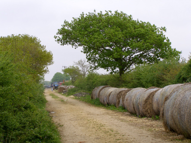 Bridleway approaching Dilton Farm from the east