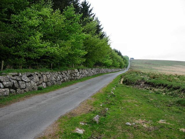Towards Holming Beam - Dartmoor
