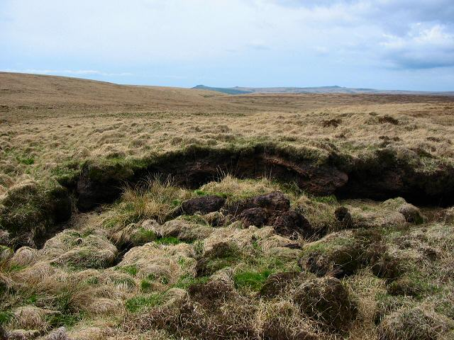 Peat Hags near South Tavy Head - Dartmoor