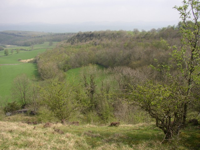Cunswick Scar, Bradleyfield