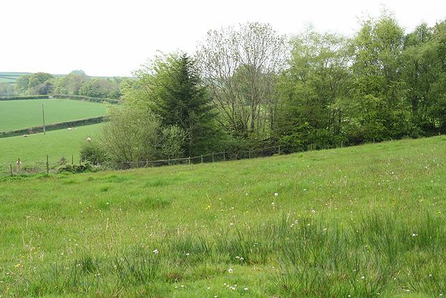 Skilgate: near Haddon End