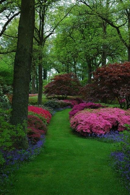 Cole's Gardens.