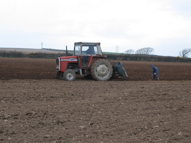 We plough the fields and scatter ........