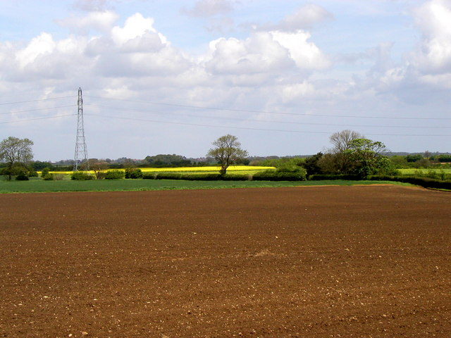 Holderness Farmland