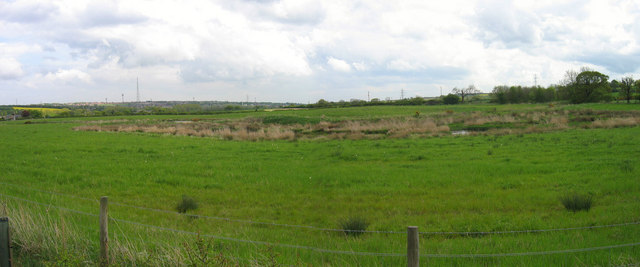 Nature Reserve near Lamesley