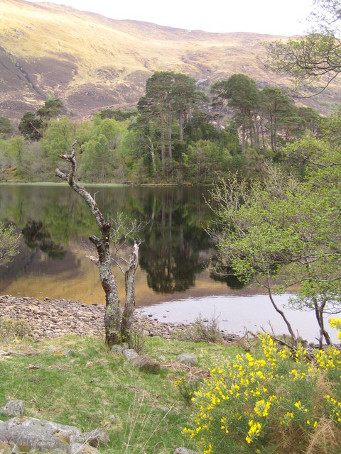 Island in the North East of Loch a Mhuillidh