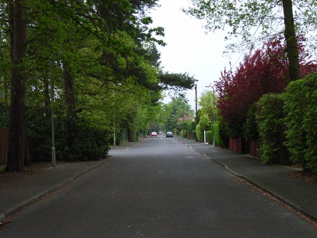 Wood Lane, Fleet