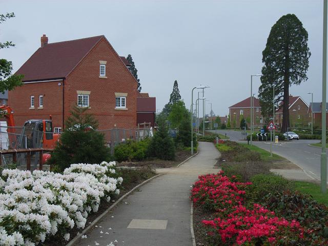 Elvetham Heath